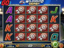 Online Casino - 534003