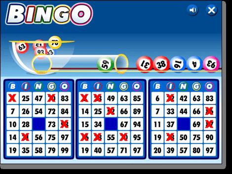 Bingo online - 696800